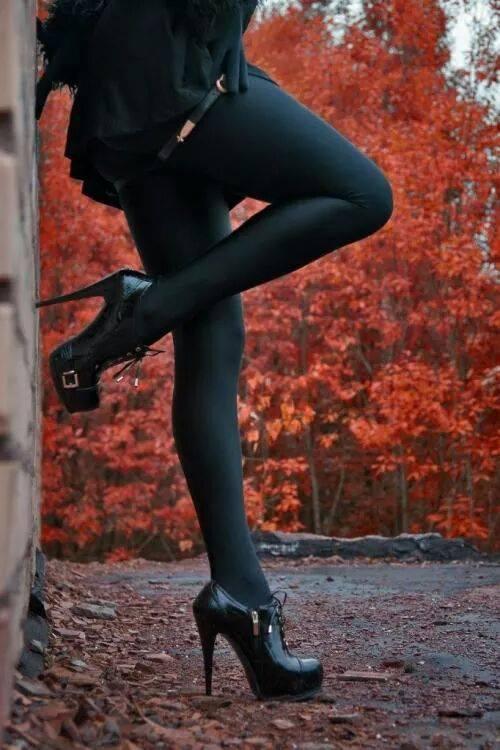 black_autumn.jpg (57 KB)