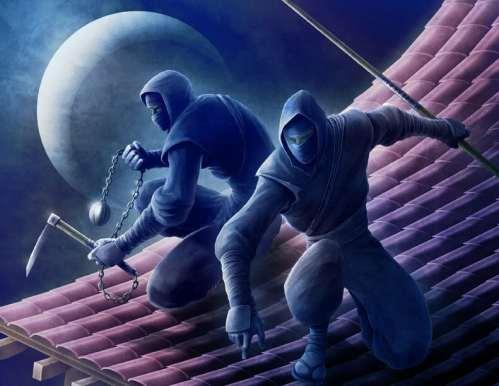 Ninja1.jpg (86 KB)