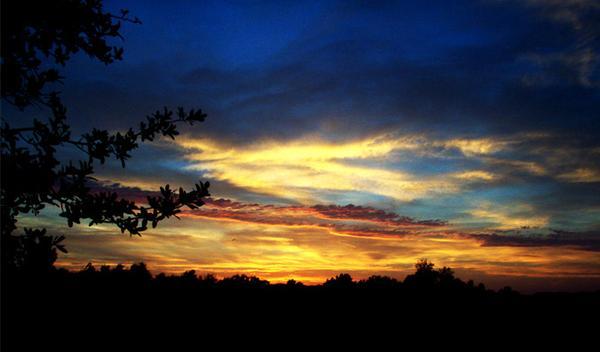 dusk.jpg (23 KB)