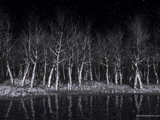 sleepingforest.jpg (758 KB)