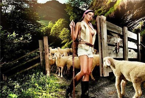 sheepherder.jpg (137 KB)