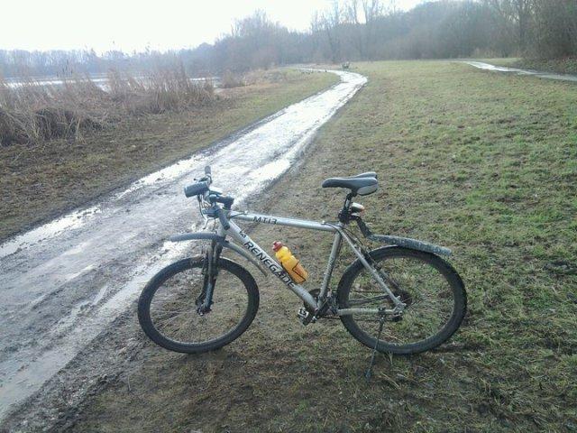 03_Bike.jpg (123 KB)