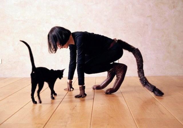 Marion-Laval-Jeantet-hooves-cat.jpg (88 KB)