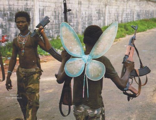 Butterfly Killer.jpg (87 KB)