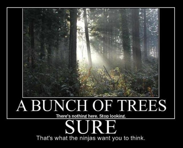 ninjas-trees.jpg (55 KB)