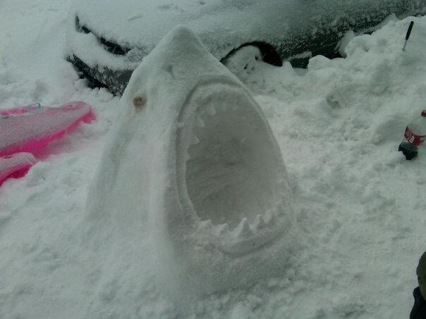 snow.jpg (46 KB)