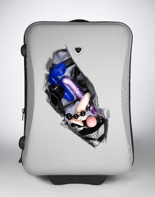 cheeky-suitcase-sticker-disguise.jpg (57 KB)