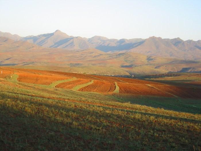 African_landscape.jpg (460 KB)