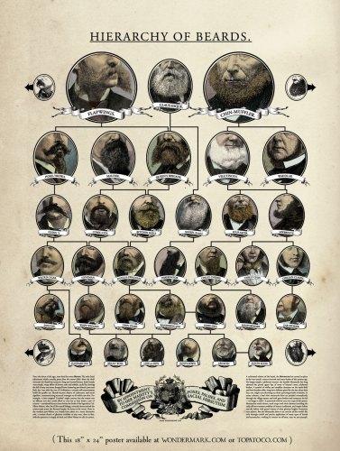 beardposter_lg.jpg (399 KB)
