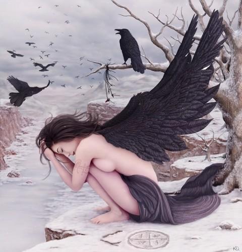 ravens.jpg (337 KB)