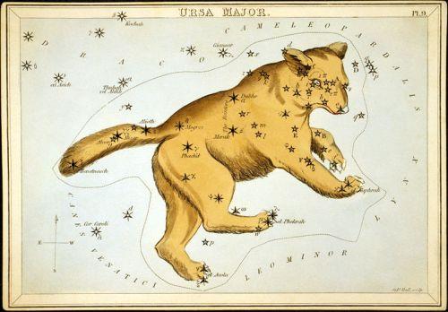 800px-Ursa_Major2.jpg (106 KB)