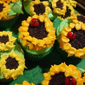 Sunflower Cupcakes 2