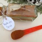 Подправка Ябълков пай (Apple Pie Spice)