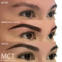 Before, immediately after and Healed powder finish brow tattoo.