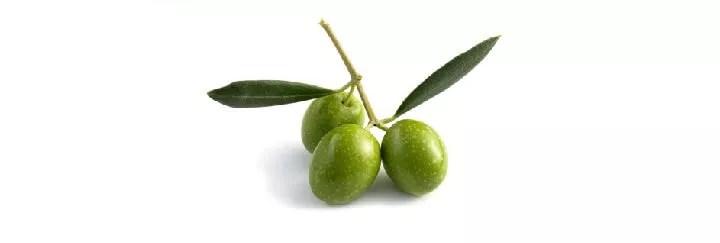 """Résultat de recherche d'images pour """"huile d'olive"""""""