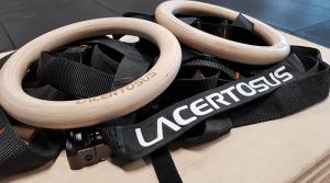 anelli da palestra con cinghie lacertosus