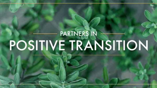 Partners in Positive Transition, Part 3 Image