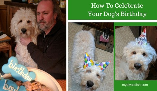how to celebrate dog birthda