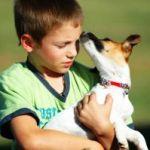 https://i0.wp.com/www.mydogmagazine.com/wp-content/uploads/2011/09/ox78B.jpg?resize=150%2C150