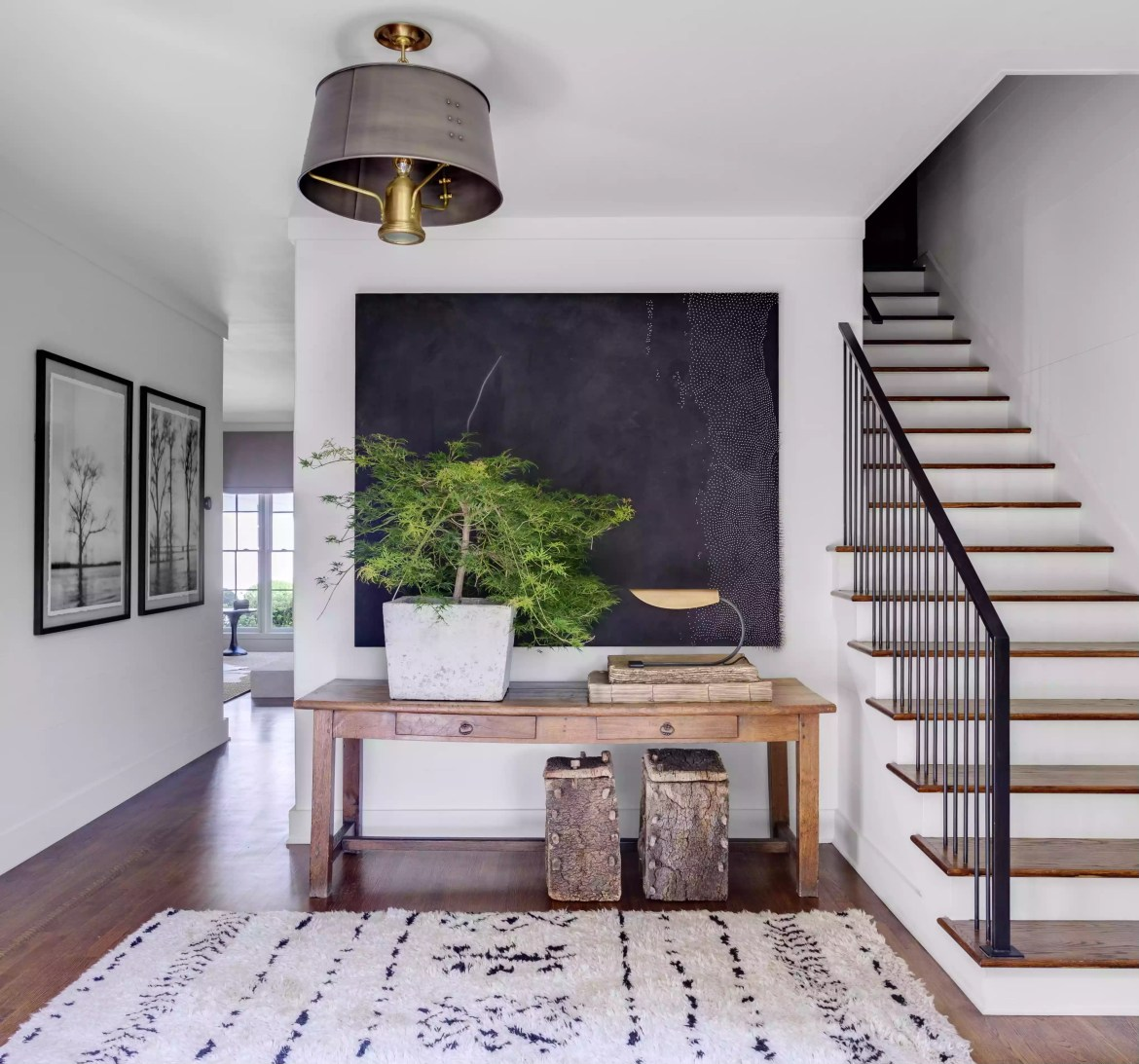 Modern traditional entryway with large plant.