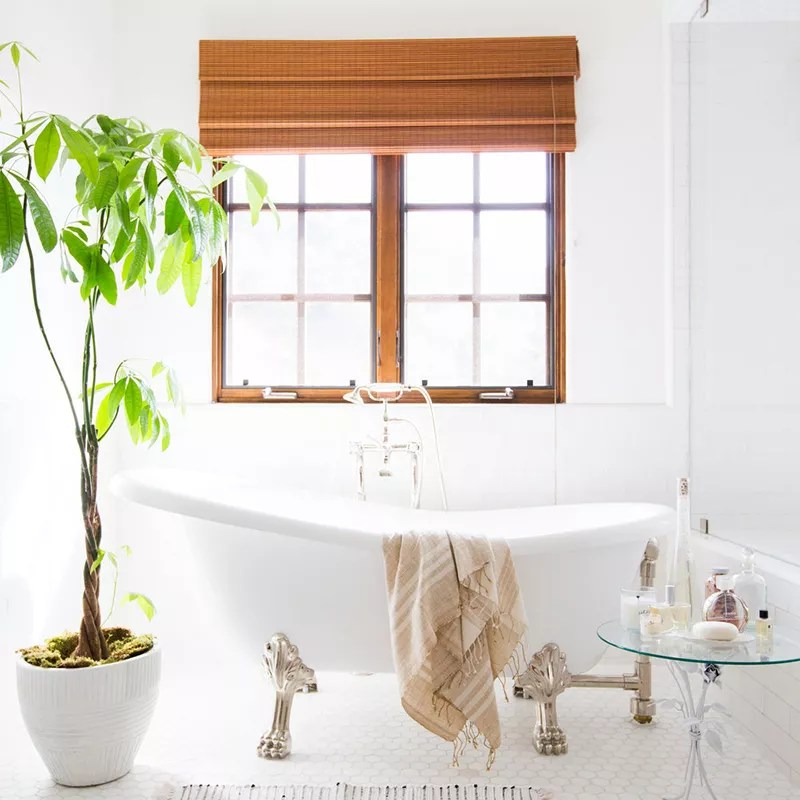 White sunny bathroom.