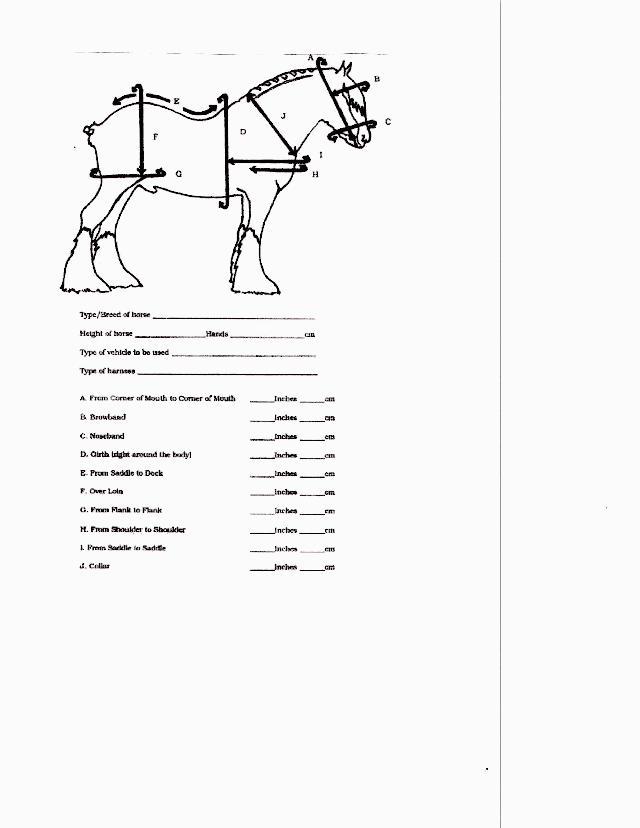 Draft Practice Harness