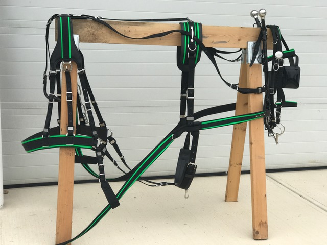 Horse Harness Parts Moreover Draft Horse Harness Parts Diagram