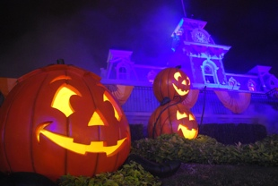 Halloween_Pumpkins_and_Main_Street_RR_Station_100_310