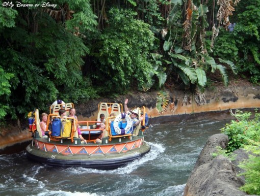 Kali River Rapids is a ride where you are almost guaranteed to get soaking wet!