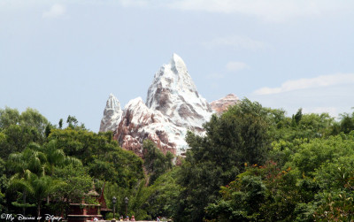 To me, seeing Expedition Everest in the distance is the perfect Disney Weenie for Animal Kingdom!