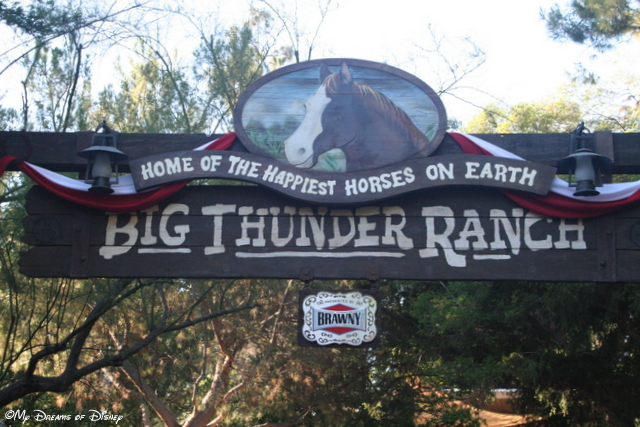 Big Thunder Ranch is a great little outdoor petting zoo type environment!