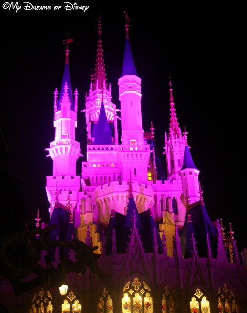 Dinner inside Cinderella Castle is a very romantic occasion!