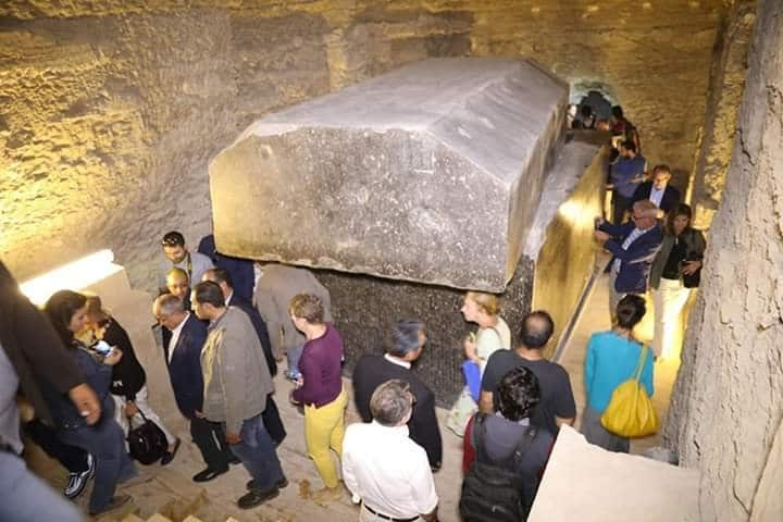 Tomb Full of Sacred Cats and Beetles Found in Sakkara 14