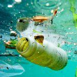 Alarm sounded over plastic debris polluting deepest seas