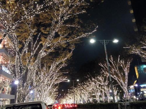 omotesando illuminations