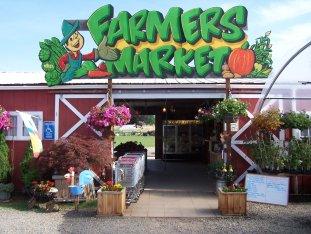 bizi farms