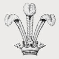 Lambert Family Crest and Coat of Arms : MyFamilySilver.com
