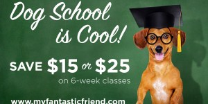 Dog training classes in Howard County Maryland