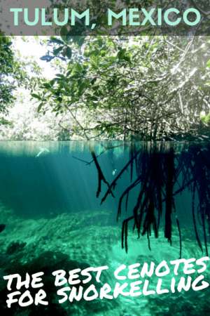 Tulum Mexico Snorkelling Cenotes 1