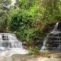 Serenity Falls (Buderim Waterfall), the Inland Jewel of The Sunshine Coast