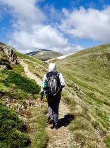 Mount Kosciuszko - Main Range Summit loop portrait