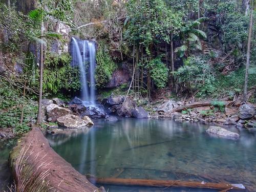 Curtis Falls Mount Tamborine