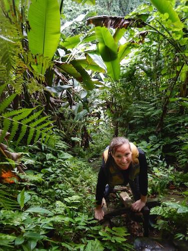 Millennium Cave Vanuatu - Ladder Elo