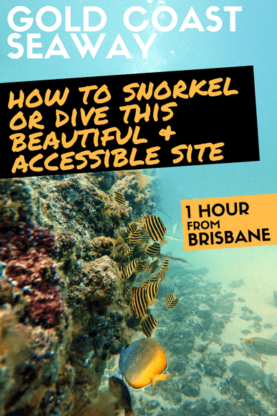 How to snorkel or diving the Gold Coast Seaway