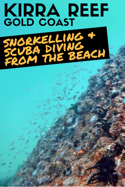 Snorkelling and Scuba Diving from Kirra Beach on the Gold Coast