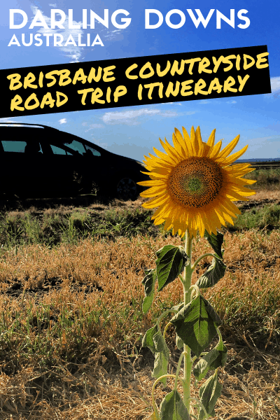 Brisbane countryside road trip itinerary weekend to see sunflower fields in Allora