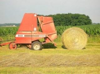round bale of hay 7