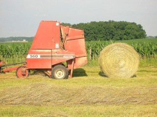 round bale of hay 8