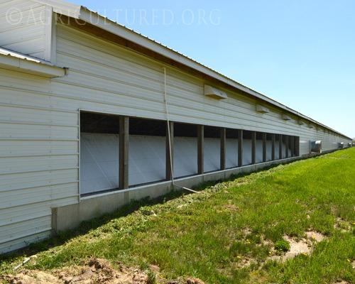 Ventilation in Turkey Barns