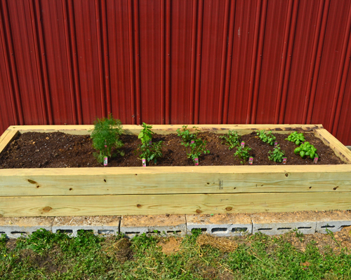 Building A Raised Herb Garden My, How To Make A Raised Herb Garden